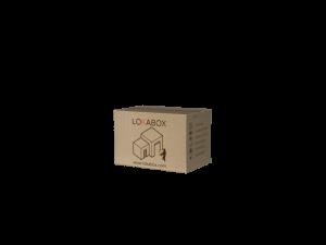 Medium Doos Lokabox